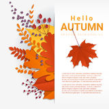 Hello autumn with colorful leaves and fruits background Royalty Free Stock Photography