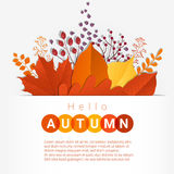 Hello autumn with colorful leaves and fruits background Royalty Free Stock Photos