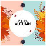 Hello autumn with colorful leaves and fruits background Royalty Free Stock Photo