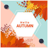 Hello autumn with colorful leaves and fruits background Stock Photo