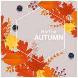 Hello autumn with colorful leaves and fruits background Stock Photography