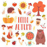 Hello autumn cute animals and attribute set. royalty free illustration