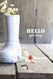 Hello autumn, daisy and boots on a vintage table, Royalty Free Stock Photos