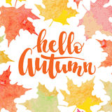 Hello autumn - decorative inscription. Hello autumn - hand written inscription with orange, red and yellow maple leaves background. Vector illustration Stock Images