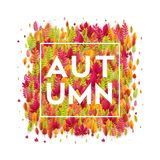 Hello autumn. Different colored autumn leaves background. Vector illustration. EPS10 Royalty Free Illustration