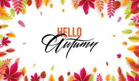 Hello autumn. Different colored autumn leaves background. Vector illustration. EPS10 Stock Illustration