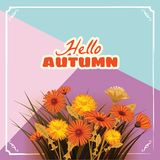 Hello Autumn, flowers, Fall, leaves, banner, greeting card, autumn colors, template, vector, illustration, isolated. Hello Autumn, flowers, Fall, leaves, banner stock illustration