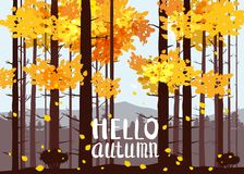 Hello Autumn, forest, mountains, silhouettes of pine trees, firs, panorama, horizon, lettering, vector, illustration. Hello Autumn, forest, mountains Stock Illustration