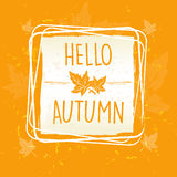 Hello autumn in frame with leaves Stock Image