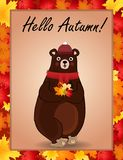Hello autumn greeting card with cute bear in hat and scarf holding fallen leaves Royalty Free Illustration