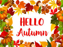 Hello Autumn greeting card with fall nature frame Royalty Free Stock Photos