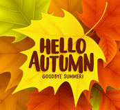 Hello autumn greetings vector design with yellow maple leaf Stock Photos