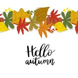 Hello autumn hand lettering phrase. And seasonal orange, brown, green and yellow oak and maple leaves background royalty free illustration