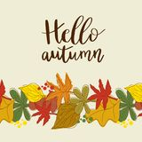 Hello autumn hand lettering phrase. And seasonal orange, brown, green and yellow oak and maple leaves background vector illustration