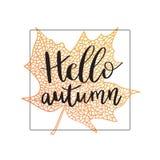 Hello autumn hand lettering phrase on orange maple leaf background.  royalty free illustration