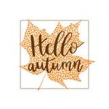 Hello autumn hand lettering phrase on orange maple leaf background.  vector illustration