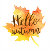 Hello autumn hand lettering phrase on orange watercolor maple leaf background. Royalty Free Stock Photo