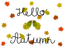 Hello Autumn Hand Written Concept with Oak and Maple Leaves on White. Vector art Royalty Free Illustration