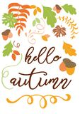 Hello autumn hand written inscription orange hand drawn fall leaf. Hello autumn hand written inscription decorated hand drawn autumn leaf Modern calligraphy royalty free illustration