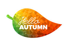Hello autumn, leaf with colorful geometrical triangle fill, Stock Image