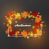 Hello autumn leaves background. White frame with glowing lights. Autumnal vector illustration Stock Image