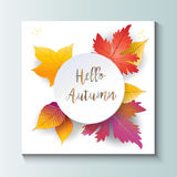 Hello Autumn leaves frame. Hello Autumn Holiday decorative background with fall maple leaves, red, orange, yellow color Autumn leaf, lettering text, white paper Royalty Free Stock Images