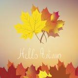 Hello autumn Stock Photo