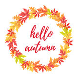 Hello autumn leaves rounded frame Stock Photography