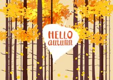 Hello autumn, lettering on an autumn leaf, fall, background landscape forest, tree trunks, template for banner, poster. Hello autumn, lettering on an autumn leaf Stock Illustration