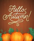 Hello Autumn Lettering. Hand Written Typography. Vector Illustration for Your Design. royalty free stock photo