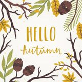 Hello autumn lettering. Natural frame. royalty free illustration