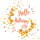Hello autumn lettering. Autumn lettering template for design banner,ticket, leaflet, card, poster and so on Royalty Free Stock Image