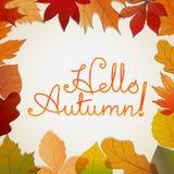 Hello autumn logo. Vector concept Stock Photography