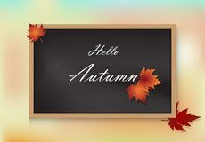 Hello Autumn and Maple leaves Paper art on Chalkboard background. Hello Autumn and Maple leaves Paper art, Paper craft on Chalkboard background Royalty Free Illustration