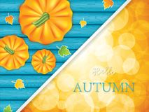 Hello autumn. Maple tree leaves and pumpkins on blue wooden background.Thanksgiving Holiday decoration.Hello Autumn vector.Seasonal concept brochure Stock Photos