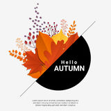 Hello autumn with modern colorful leaves and fruits background Royalty Free Stock Photos