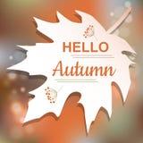 Hello Autumn orange card design Royalty Free Stock Images