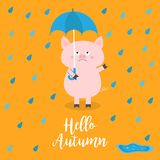 Hello autumn. Pig holding blue umbrella. Rain drops, puddle. Angry sad emotion. Hate fall. Cute funny cartoon baby character. Pet. Animal collection Orange vector illustration