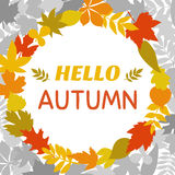 Hello autumn. Round frame of autumn leaves. Cute nature backgrou. Nd. Vector illustration Royalty Free Stock Images