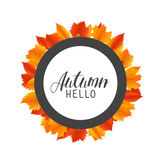 Hello Autumn round frame with hand drawn orange and red leaves. Vector banner fall design.  Stock Photo