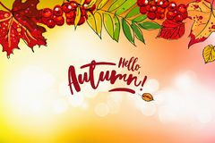 Hello autumn sale background. Hello autumn sale template with colorful leafs and berries. Hand drawn lettering Stock Illustration