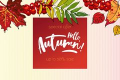 Hello autumn sale background. Hello autumn sale template with colorful leafs and berries. Hand drawn lettering Stock Image