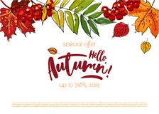 Hello autumn sale background. Hello autumn sale template with colorful leafs and berries. White background. Hand drawn lettering Stock Photos