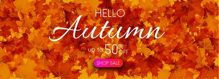 Hello autumn 50% sale. Promo banner with golden leaves. Hello autumn 50 sale. Promo banner with golden leaves. Vector background Royalty Free Illustration