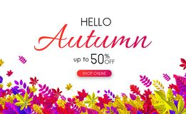 Hello autumn 50% sale. Promo poster with colorful leaves. Hello autumn 50 sale. Promo poster with colorful leaves. Online shopping. Vector background Vector Illustration