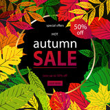 Hello Autumn Sale. Text poster of September leaf fall or autumnal foliage of maple, oak acorn and elm for shopping sale design or promo poster and frame leaflet vector illustration