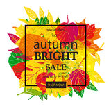Hello Autumn Sale Stock Photos