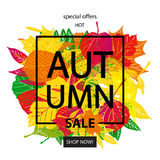 Hello Autumn Sale Royalty Free Stock Images