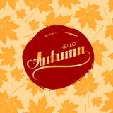 Hello Autumn. Seasonal vector illustration Stock Photos