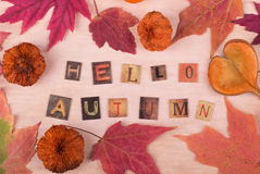 Hello Autumn Sign Royalty Free Stock Image